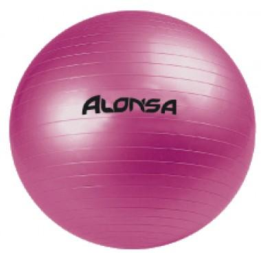 Мяч гимнастический 65см  ALONSA