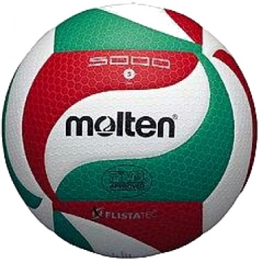 Мяч волейбольный MOLTEN   V5M5000